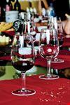 Degustazioni dei vino DOC Colli Bolognesi