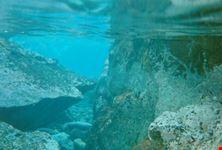 Fondali cristallino ma purtroppo niente pesci