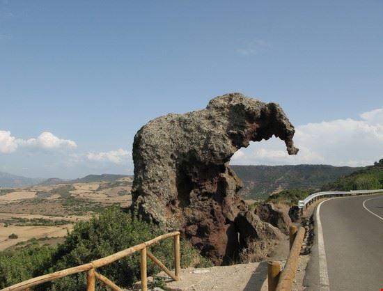 la rocia dell' Elefante