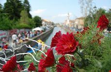 Un ponte fiorito