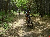 randazzo etna in mountain bike