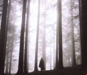 Le foreste sacre