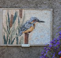 Mosaico Passerotto