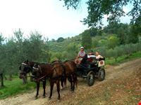 Tour in carrozza