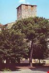 Torre Medioevale (sec. XIII)