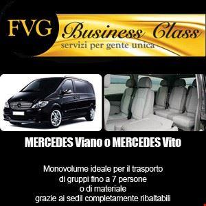 Mercedes Viano o Vito con autista