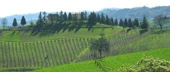 17539_bologna_campi_intorno_all_azienda_vinicola
