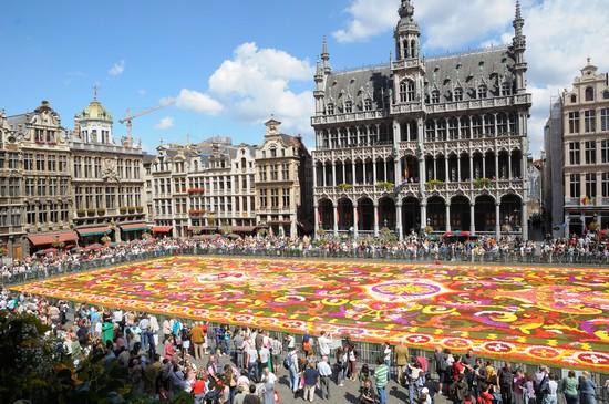 Tappeto Floreale Bruxelles : Un kilim di begonie sulla grand place di bruxelles viagginbici