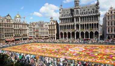 bruxelles tappeto di fiori nella grand place