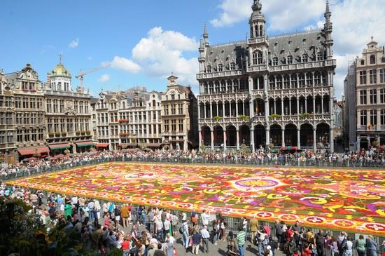 Le tapis de fleurs à la Grand place de Bruxelles 17585_bruxelles_tappeto_di_fiori_nella_grand_place