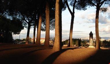 17607_roma_viale_alberato_acquedotti