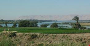 piante lussureggianti sul Nilo