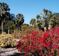 santo domingo giardino botanico