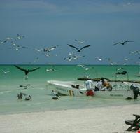 spiaggia Holbox