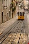 Il tram 28 in servizio