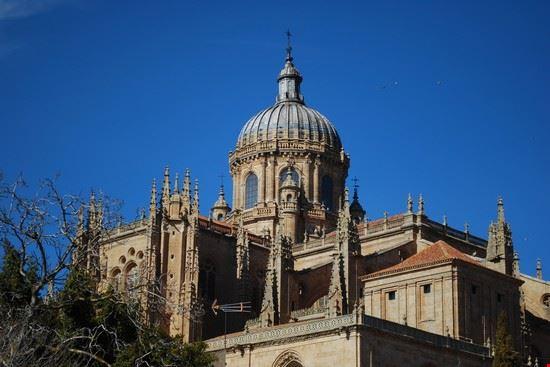 18225 salamanca catedral nueva