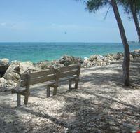 18251 miami spiaggia