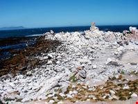 citta del capo pinguini a stony point