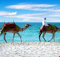 dubai la spiaggia di jumeirah