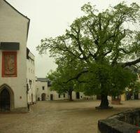 18563 salisburgo hohensalzburg il burghof