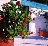 naxos tipiche case bianchissime