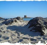 18849 stintino spiaggia di la pelosa