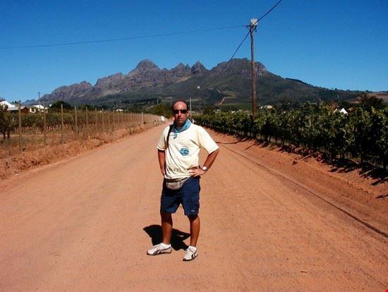 stellenbosch sulle strade delle winelands