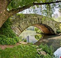 18911 new york uno dei romantici ponti del parco