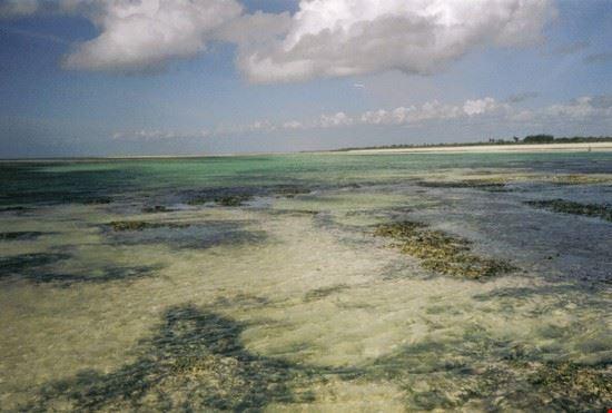 costa di Malindi