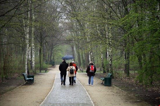 19082 berlino relax nel parco di tiergarten