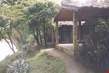 mombasa lodge-campo tendato fig tree