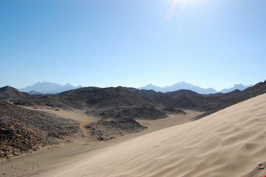 Safari nel deserto
