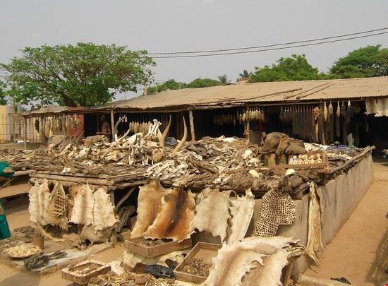 mercato dei feticci a Lomè