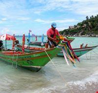 barche tradizionali