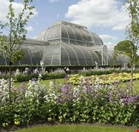 19452 londra palm house