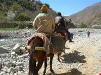 marrakech a dorso di mulo