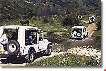 Jeeping Adventure in Galilee