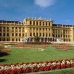 Vienna city tours1