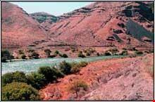River Trips2