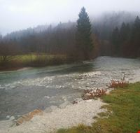 20706 bled bohinj river