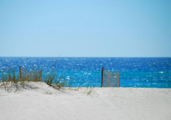 Photo Sand Dune And Fence On Beach In Pensacola Pictures