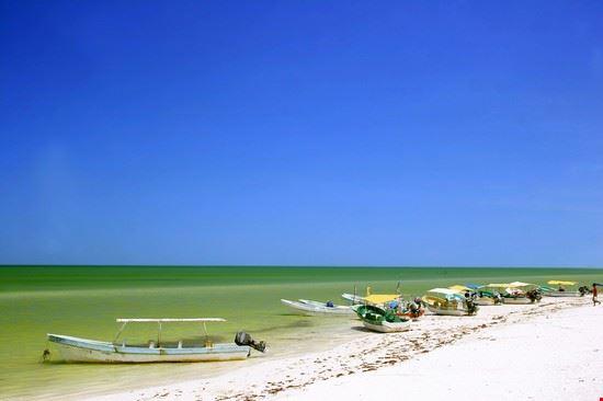 20766 playa del carmen tropical seashore