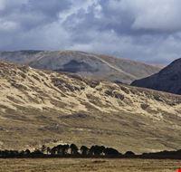 20814 galway irish landscape