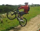 Bike Rental4