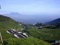 jakarta a view in puncak west javaindonesia