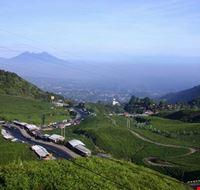 21075 jakarta a view in puncak west javaindonesia