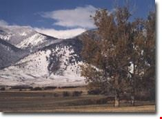 montana1