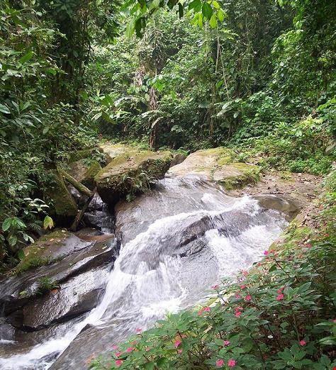 21322 quito ecotourism in peru