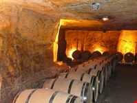 Underground cellars