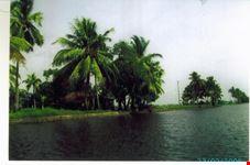 kerala rivers